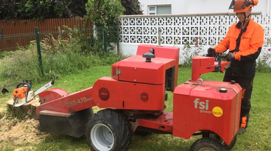 Recent Tree Surgery Works – Stump Grinding