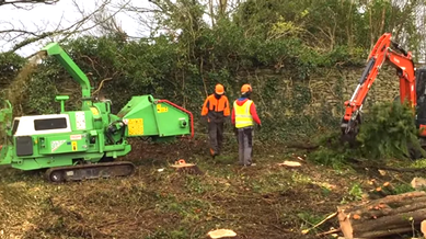 Tree Surgery Works in Ennistymon